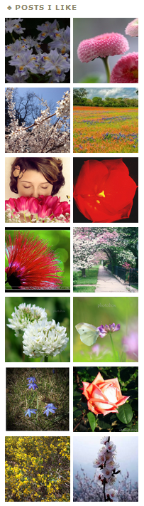 Spring Posts I Liked