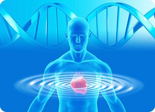 heart_DNA_sine
