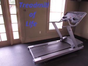 Treadmill of Life